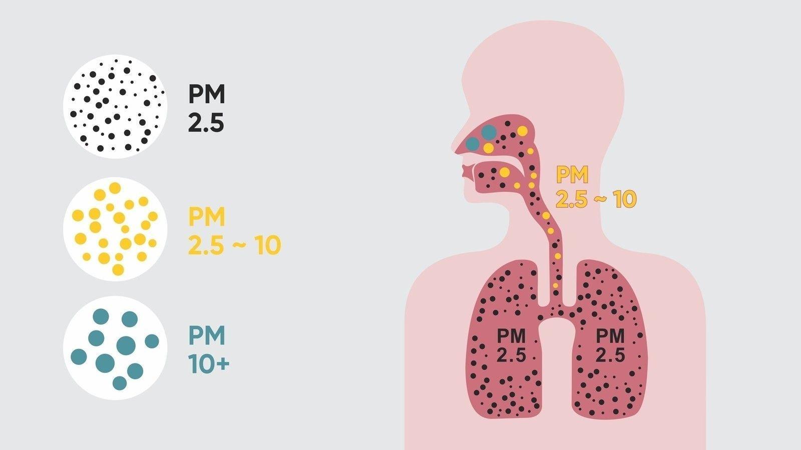 Air Pollution Index PM 2.5 in Ulaanbaatar-1