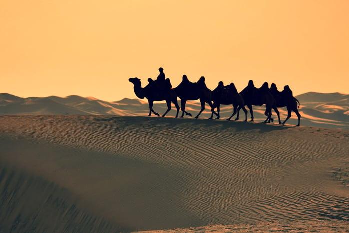 Gobi Desert-694801-edited