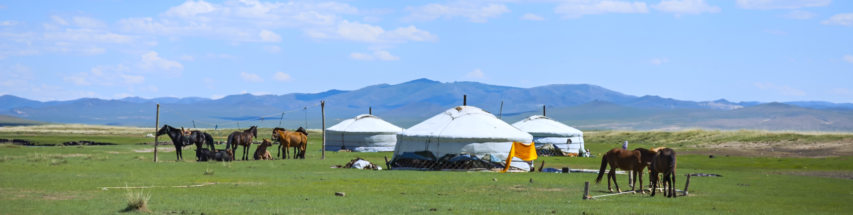 mongolia nature nomad countryside